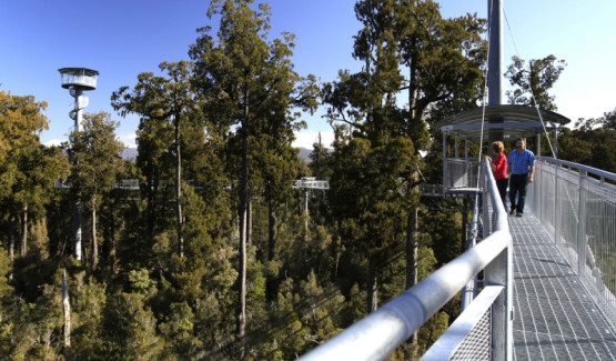 Westcoast Treetop Walk & Cafe - 5